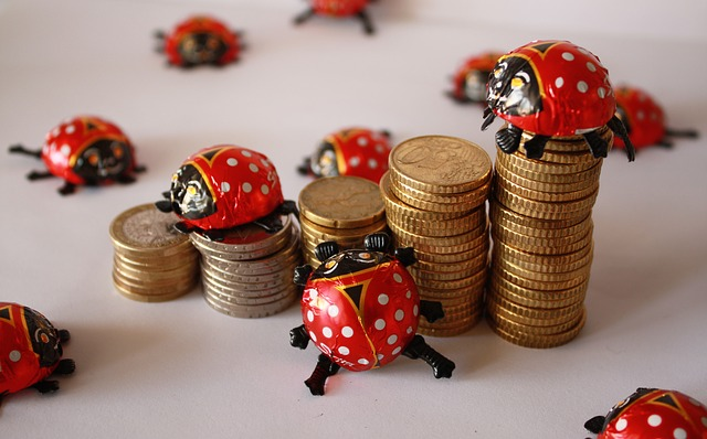 てんとう虫とコイン