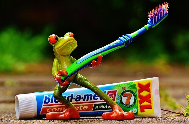 歯ブラシを持つカエル
