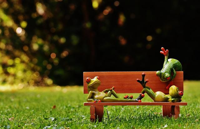 ベンチでだらだらするカエル